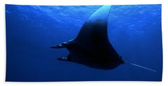 Manta Ray Beach Sheet