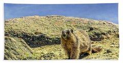 Marmot Under The Sky Beach Towel