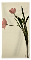 Mauve Tulips In Glass Vase Beach Sheet