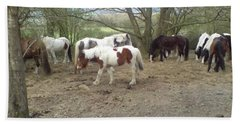 May Hill Ponies 2 Beach Towel by John Williams
