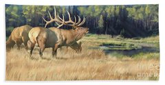 Meadow Music Beach Towel by Rob Corsetti