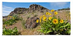 Beach Towel featuring the photograph Meadow Of Arrowleaf Balsamroot by Jeff Goulden