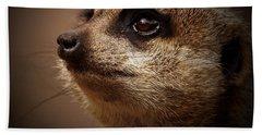 Meerkat 6 Beach Towel