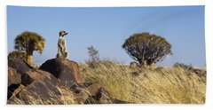 Meerkat In Quiver Tree Grassland Beach Towel