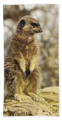 Meerkat On Hill Beach Towel