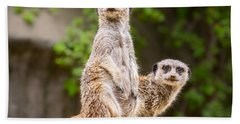 Meerkat Pair Beach Towel