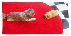 Dog And Puppy Pet Photography Lhasa Apso Shih Tzu Pomeranian   Beach Towel