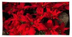 Merry Scarlet Poinsettias Christmas Star Beach Towel