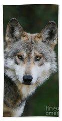 Mexican Wolf #3 Beach Towel