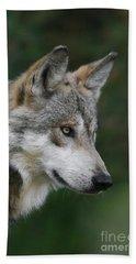 Mexican Wolf #5 Beach Towel