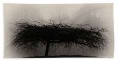 Middlethorpe Tree In Fog Sepia - Award Winning Photograph Beach Towel
