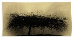 Middlethorpe Tree In Fog Antique Yellow Beach Sheet