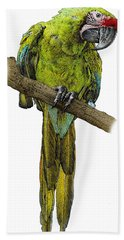 Military Macaw, Ara Militaris Beach Towel