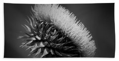 Milk Thistle Bw Beach Sheet