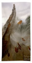 Milkweed Beach Sheet