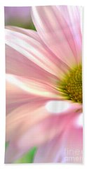 Miss Daisy Beach Towel by Deb Halloran