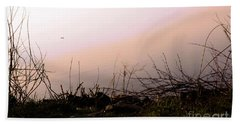 Beach Towel featuring the photograph Misty Morning by Robyn King