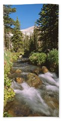 Mitchell Creek Beach Towel