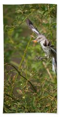 Mockingbird Beach Towel by Bill Wakeley