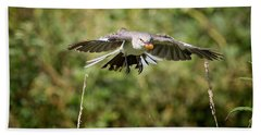 Mockingbird In Flight Beach Towel by Bill Wakeley