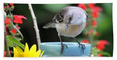 Mockingbird And Teacup Photo Beach Sheet