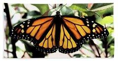 Monarch Beauty Beach Sheet