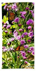 Monarch Butterfly Couple Beach Sheet
