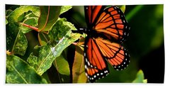 Viceroy Butterfly II Beach Towel