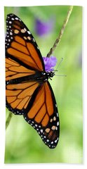 Monarch Butterfly In Spring Beach Towel