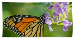 Monarch Butterfly Beach Sheet by Jane Luxton