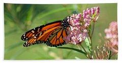 Monarch Butterfly On Milkweed Beach Towel