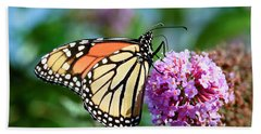 Monarch Butterfly Soaking Up The Sun Beach Towel