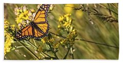 Monarch Hatch Beach Sheet