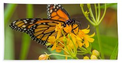 Beach Towel featuring the photograph Monarch by Jane Luxton