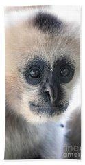 Monkey Face Beach Towel