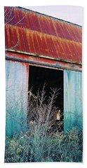 Beach Towel featuring the photograph Monroe Co. Michigan Barn by Daniel Thompson
