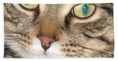 Beach Sheet featuring the photograph Monty The Cat by Jolanta Anna Karolska