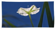 Moonflower Beach Towel