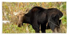 Beach Towel featuring the photograph Moose by James Peterson