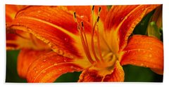 Beach Towel featuring the photograph Morning Dew by Dave Files
