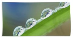 Beach Towel featuring the photograph Morning Dew Drops by Heiko Koehrer-Wagner