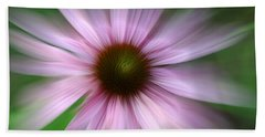 Beach Towel featuring the photograph Morning Stretch by Andrea Platt