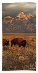 Morning Travels In Grand Teton Beach Sheet by Sandra Bronstein