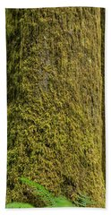 Moss Covered Tree Olympic National Park Beach Towel by Steve Gadomski