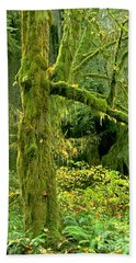 Beach Towel featuring the photograph Moss Draped Big Leaf Maple California by Dave Welling