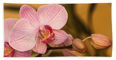 Moth Orchid Beach Towel