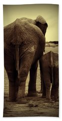 Mother And Baby Elephant In Black And White Beach Sheet