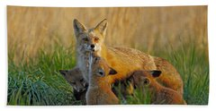Mother Fox And Kits Beach Towel