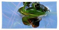 Mr. Frog Beach Sheet