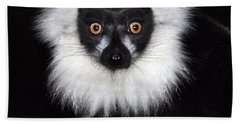 Beach Towel featuring the photograph Mr Lemur by Terri Waters